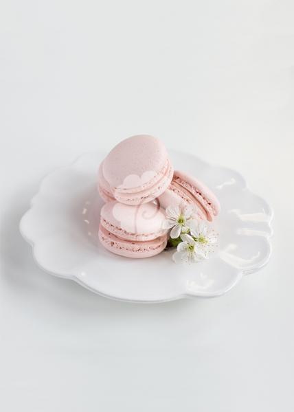 White Chocolate & Raspberry Macaron